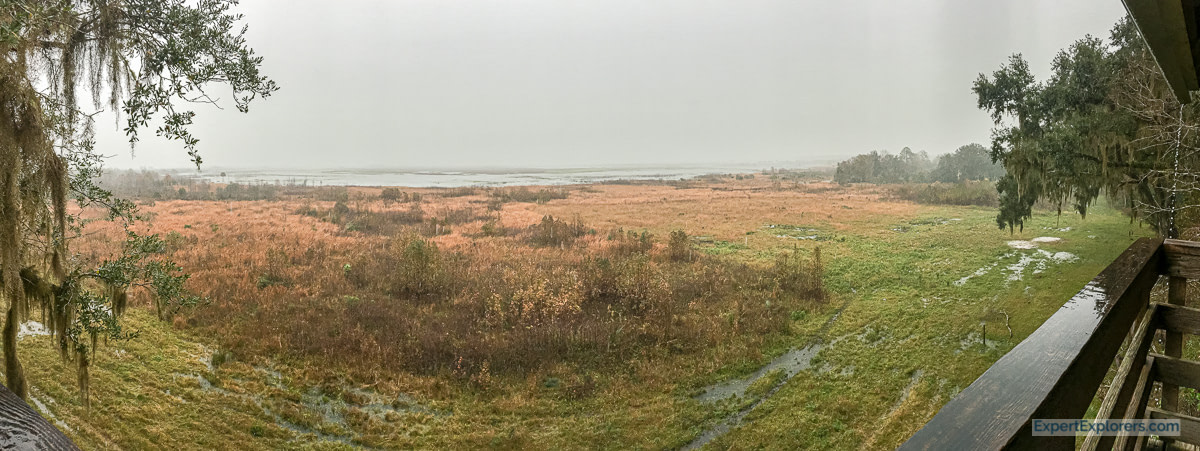 Panoramic View from the Paynes Prairie Observation Tower