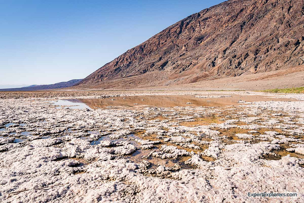 Natural Spring at Badwater Basin, Death Valley National Park