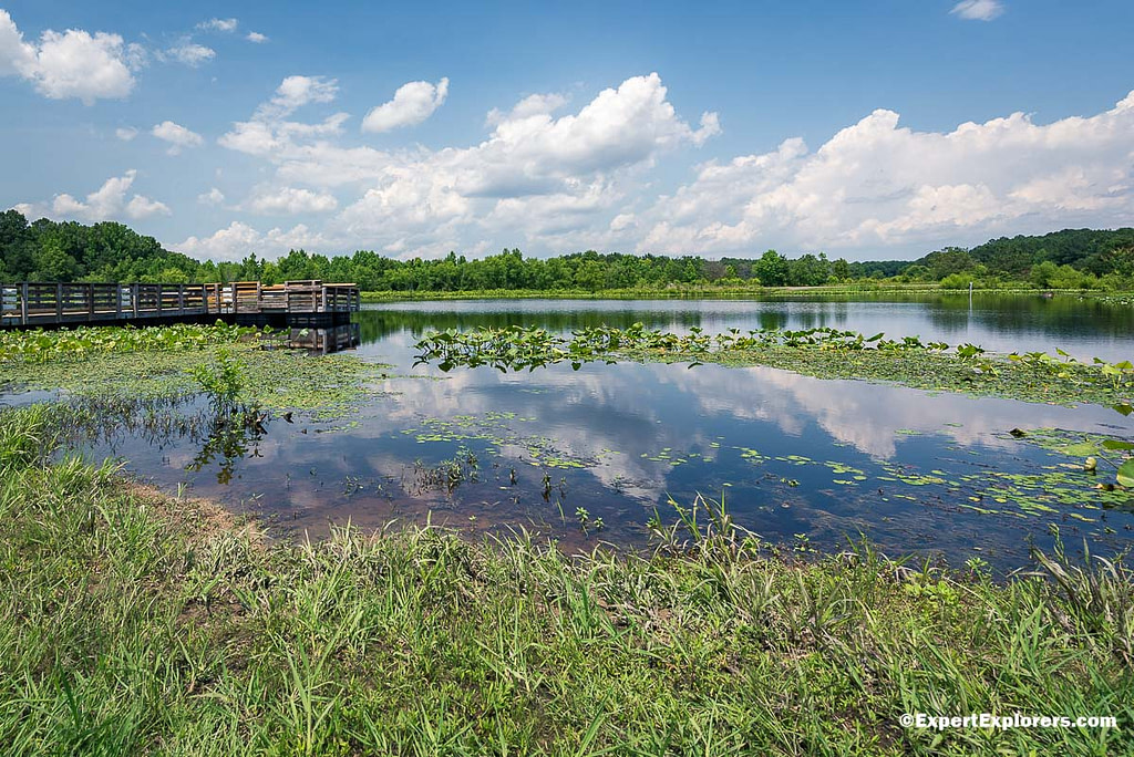 Fishing pier at Arrowhead Lake at Pee Dee National Wildlife Refuge, North Carolina