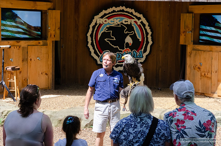 Bald Eagle demonstration with Wings to Soar at Rock City