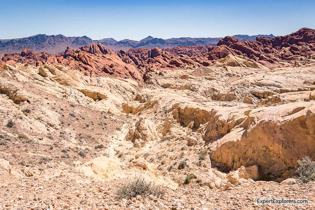 Contrasting red and white rocks of Fire Canyon, Valley of Fire State Park Nevada