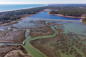 Murrells Inlet: South Carolina's Best Kept Secret