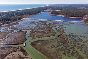 Murrells Inlet: South Carolina's Best Kept Secret