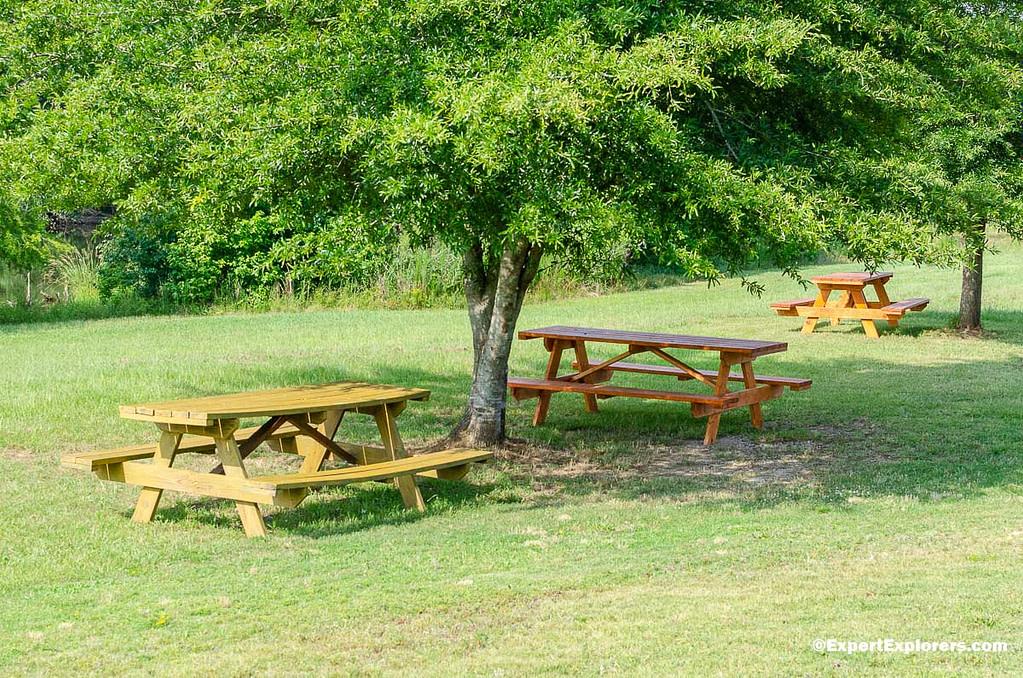 Picnic tables at Pee Dee National Wildlife Refuge, North Carolina