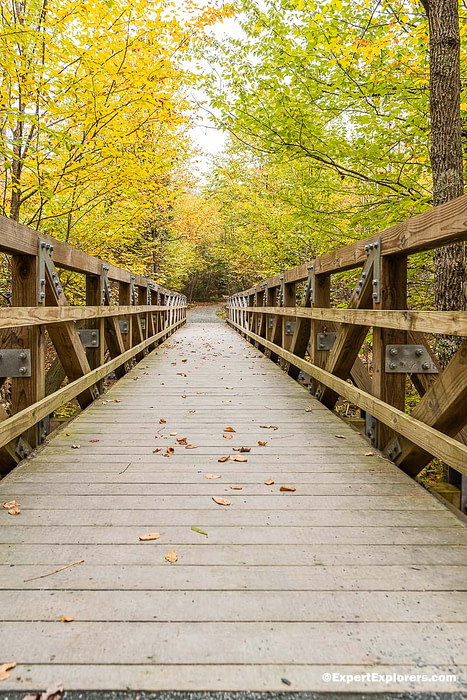 Wooden bridge on the Limberlost hiking trail at Shenandoah National Park, Virginia