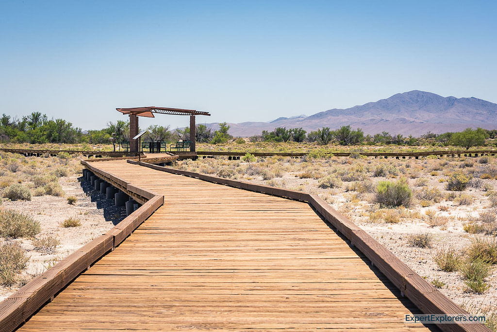 Boardwalk leading to Crystal Spring, Ash Meadows National Wildlife Refuge, Nevada