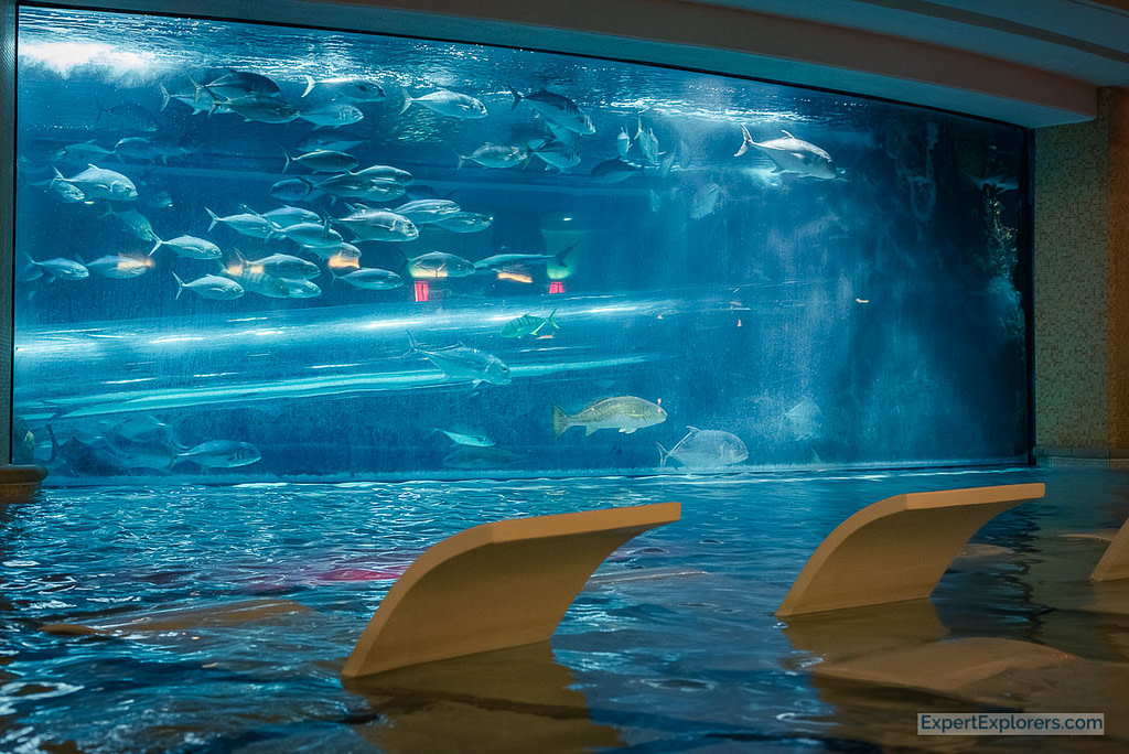 """Lounge chairs at """"The Tank,"""" Golden Nugget, Fremont Street, Las Vegas"""