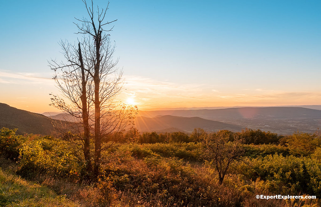 Sunset from behind a tree in the Shenandoah National Park at Spitler Knoll Overlook