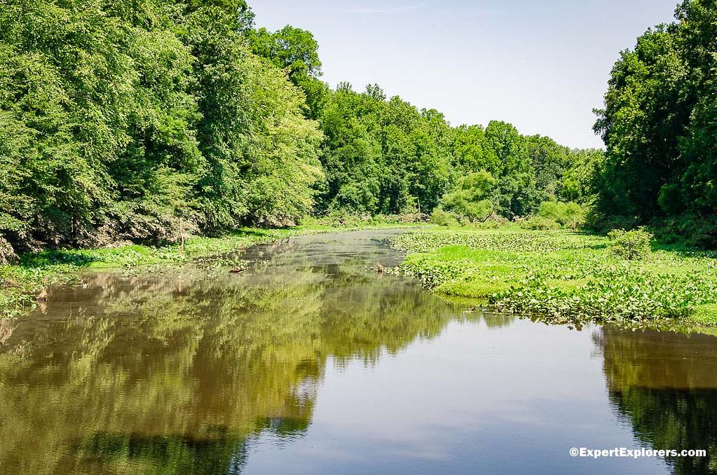 Thoroughfare Creek flows under Gaddy Covered Bridge in Pee Dee National Wildlife Reserve