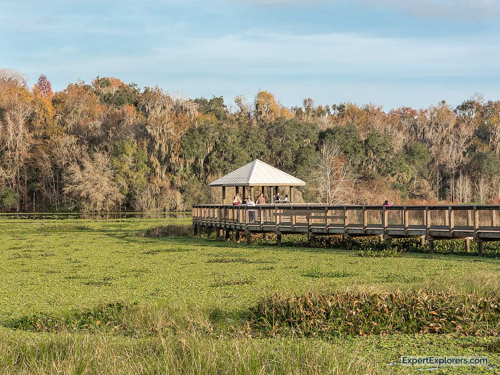 La-Chua Trail Gazebo at Paynes Prairie