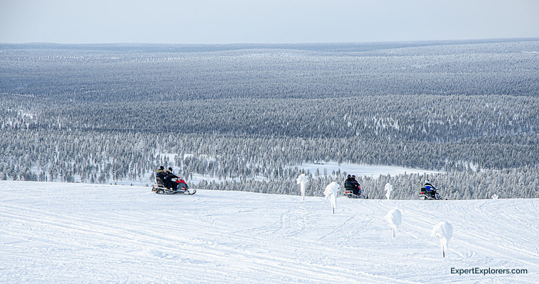 Snowmobiles ride off into the distance at Saariselkä